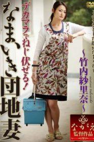 >Risa Murakami แม่บ้านจอมจุ้นกับพ่อหนุ่มนักเย็ด NSPS-208 ซับไทย jav